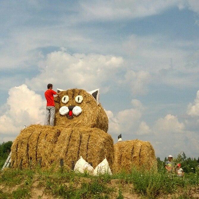 Результат работы - два соломенных кота на лиозненской трассе. Фото предоставлено Ксенией