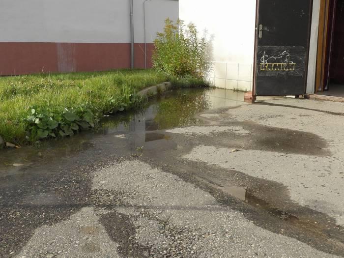 Возле «Камней» круглый год течет вода. Фото 13 октября Светланы Васильевой
