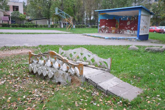 На фоне - типичный дворовой пейзаж. Фото Анастасии Вереск