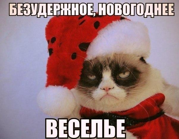 Провести новогоднюю ночь «у станка». «Обычно 31 декабря работают те, кто воспринимает праздник философски»