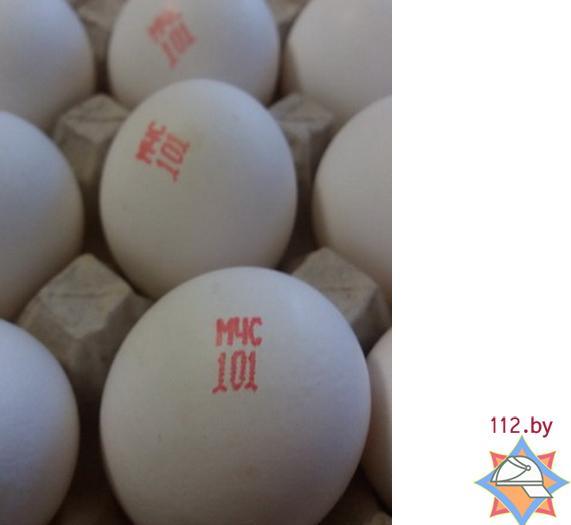 яйца МЧС