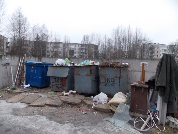 Витебск, мусорка