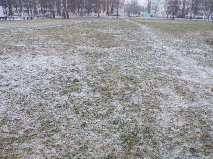 Витебск, снег, трава