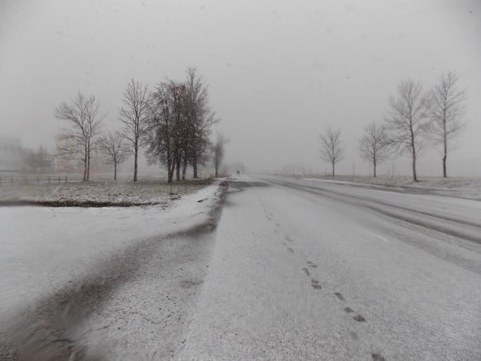 Витебск, пустырь, дорога, снег