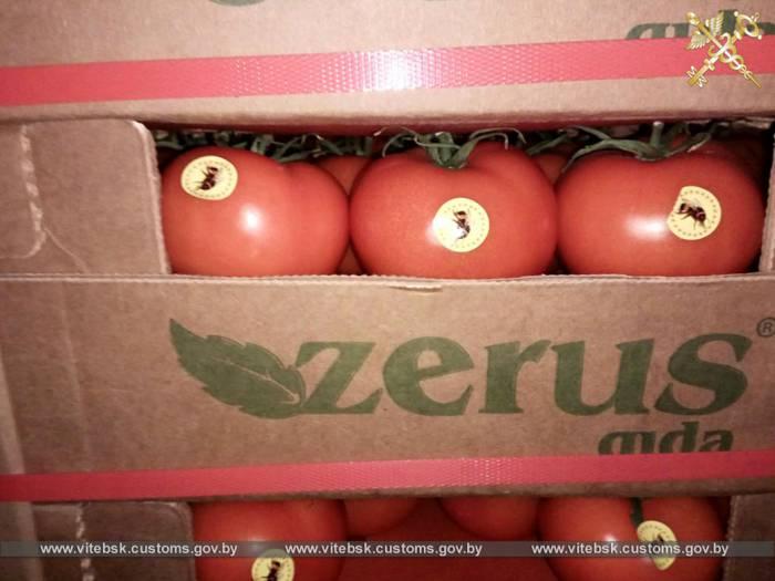 Витебская таможня за два дня февраля задержала 9 грузовиков с «незаконными» томатами, яблоками и грушами