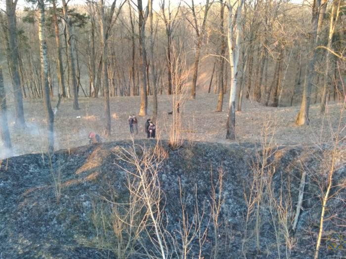 В Витебске в лесопарковой зоне на улице Карла Маркса мужчина тушил траву и получил около 30% ожогов тела
