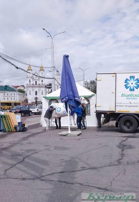 Витебск готовится к Дню рождения. На площади Свободы уже выставили корову