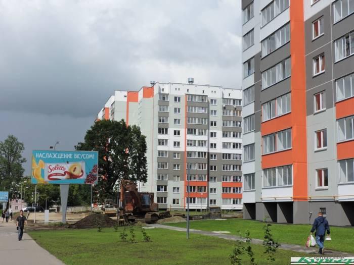 В Витебске на улице Смоленской жильцы новостройки пытаются спасти дерево