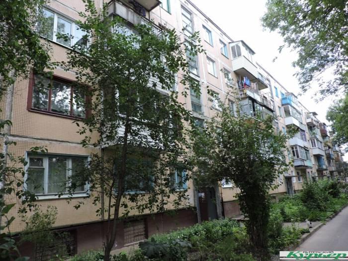 Жители улицы Золотогорской в Витебске: «В нашем доме нет таких людей, которые «помогли» бы бездомному животному вылететь в окно»