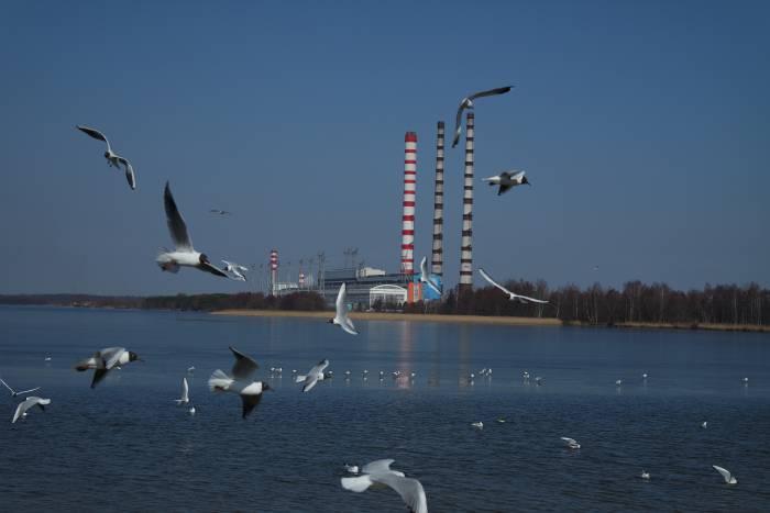 Тест: Что ты знаешь о городах Витебской области?