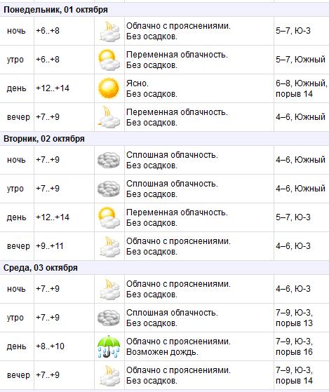 В Витебск возвращаются дожди: погода на предстоящей неделе