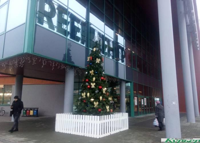 Фотофакт. В Витебске появилась первая новогодняя елочка