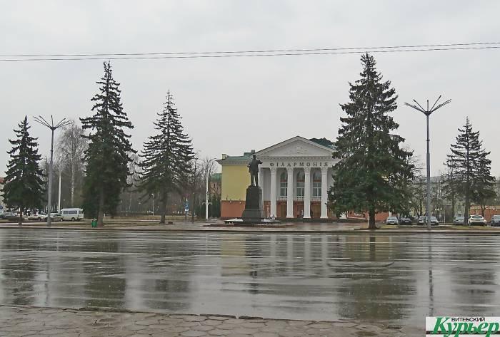 В Витебске на площади Ленина сохнут ели. Вид живых «декораций» на площади оставляет желать лучшего
