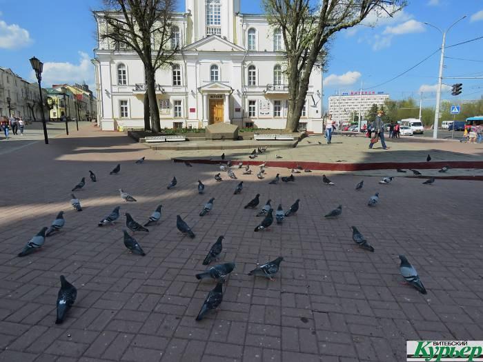 В центре Витебска Ратушную площадь помыли, а строительный мусор оставили