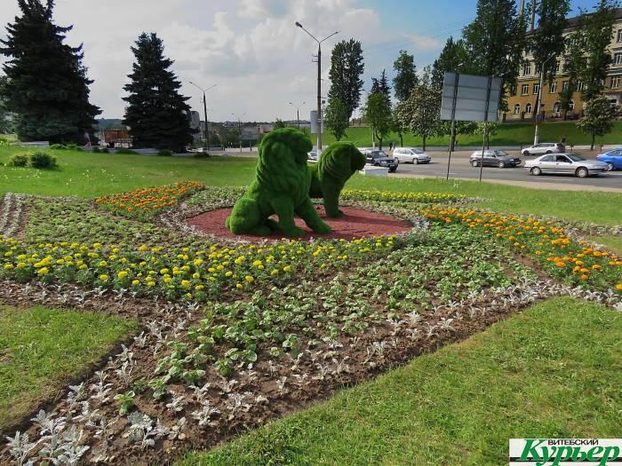В Витебске вокруг зеленых львов высадили цветы. С надеждой на то, что это остановит вандалов