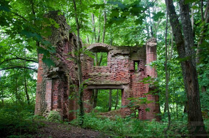 Где недалеко от Витебска архитектор из Англии строил замок. Путешествие на выходные на видео за 1,5 минуты