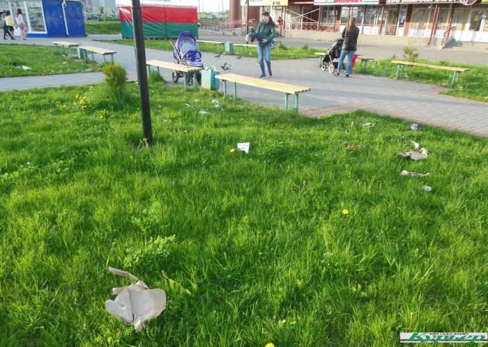В Витебске микрорайон Билево зарастает мусором. Сколько это будет продолжаться?