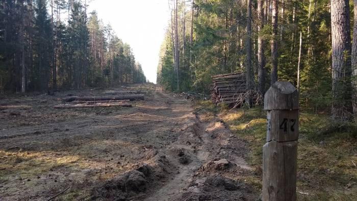 В Поставском районе планируют разрабатывать карьер. Активисты считают, что это может плохо повлиять на экосистемы рек Олксна, Лынтупка и Страча