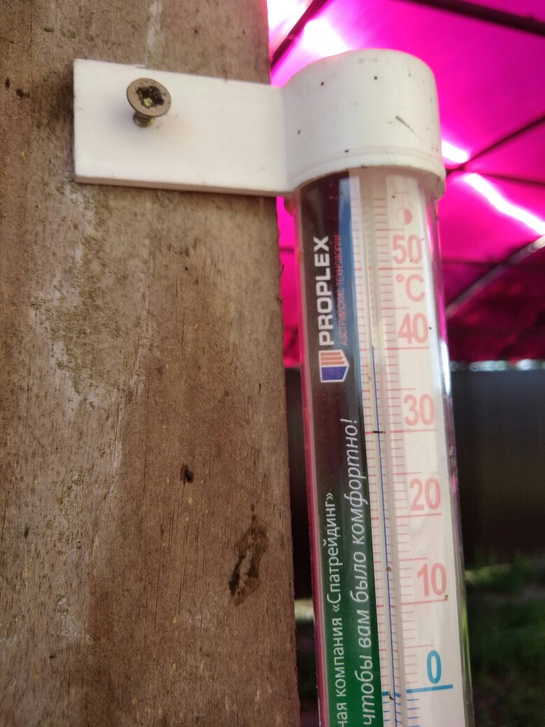 Температурные рекорды июньской жары: у кого больше? В Беларуси делятся в соцсетях «раскаленными» фото