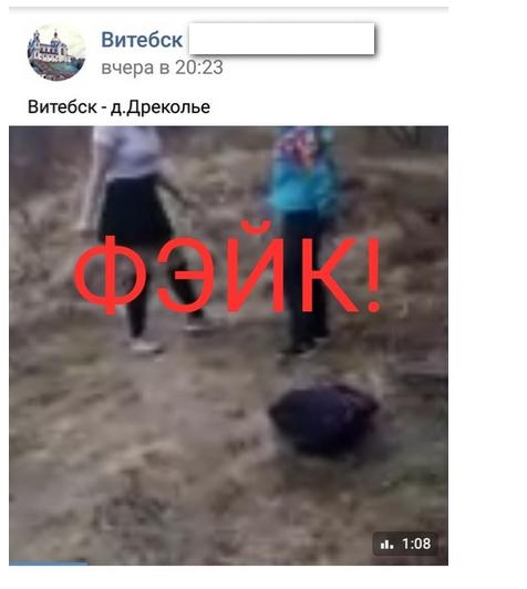 Витебские паблики разместили видео про жестокую драку между школьницами. Новость оказалась фейком