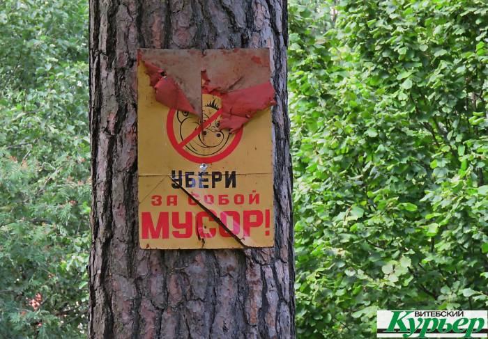 Лес возле Тарного в Витебске превращается в помойку. Разбили шлагбаум, мусор свозят машинами, завалили даже дорогу