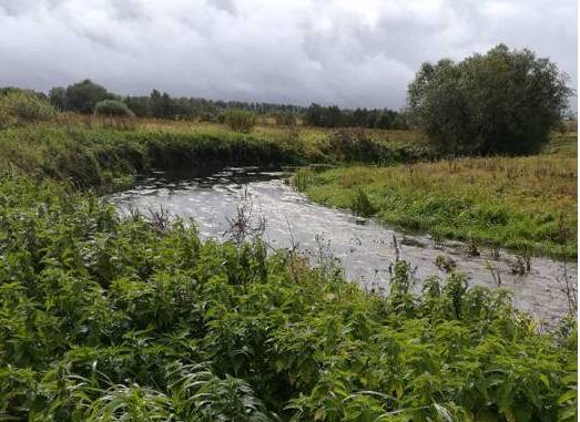 На границе Толочинского и Оршанского районов установили дорожный знак «река Адров». Почему это так важно?