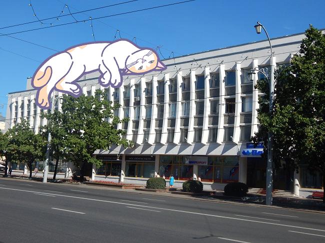 Догадайся по картинке, как называют это здание в Витебске. Развлекательный тест