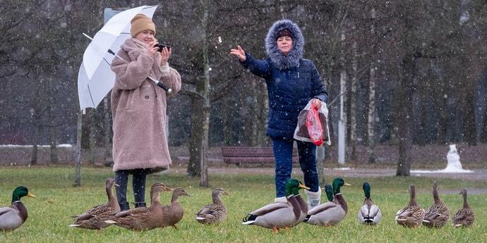 """""""Март в феврале"""" — ученые объяснили причину аномальной зимы"""