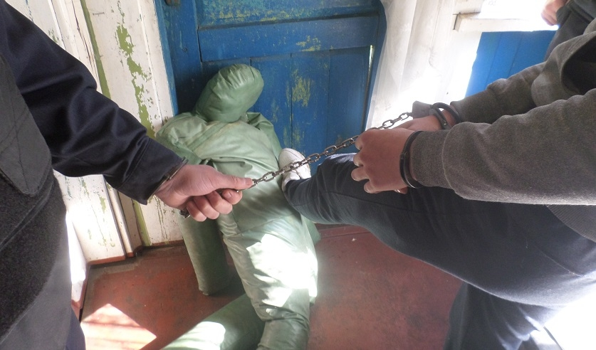 В Толочинском районе парень жестоко избил пенсионера и бросил умирать у дороги