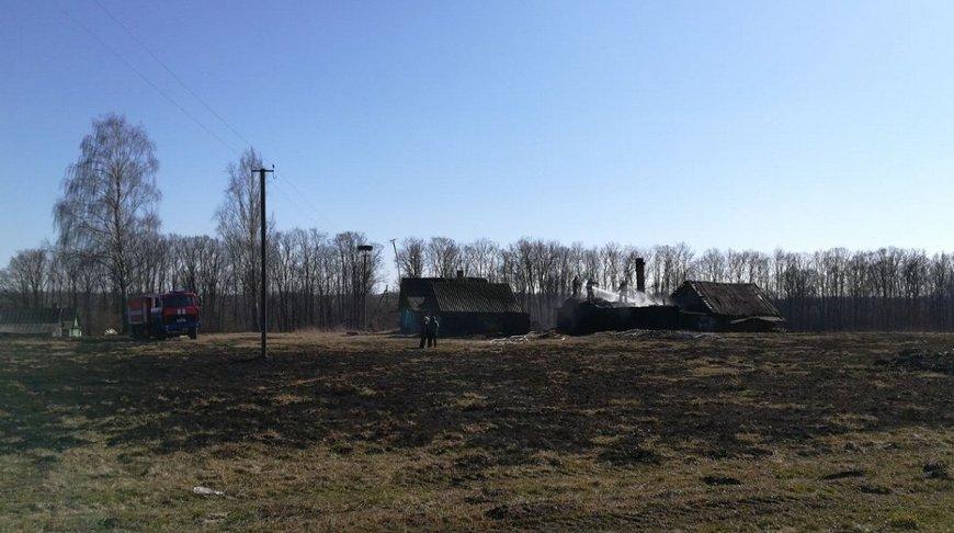 В Браславском районе при пале травы загорелся сарай