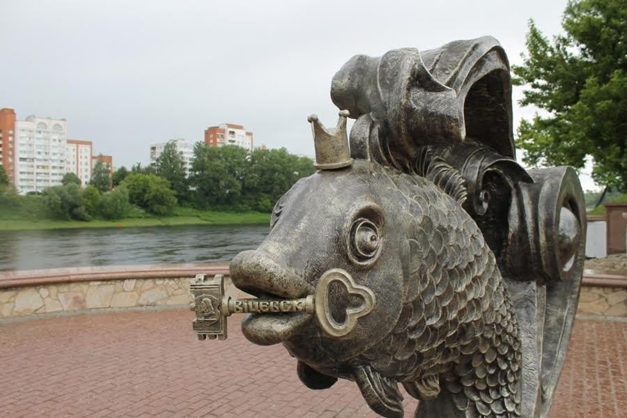 Надеются «поймать на живца»... Фотоловушка у «Золотой рыбки» установлена в Витебске