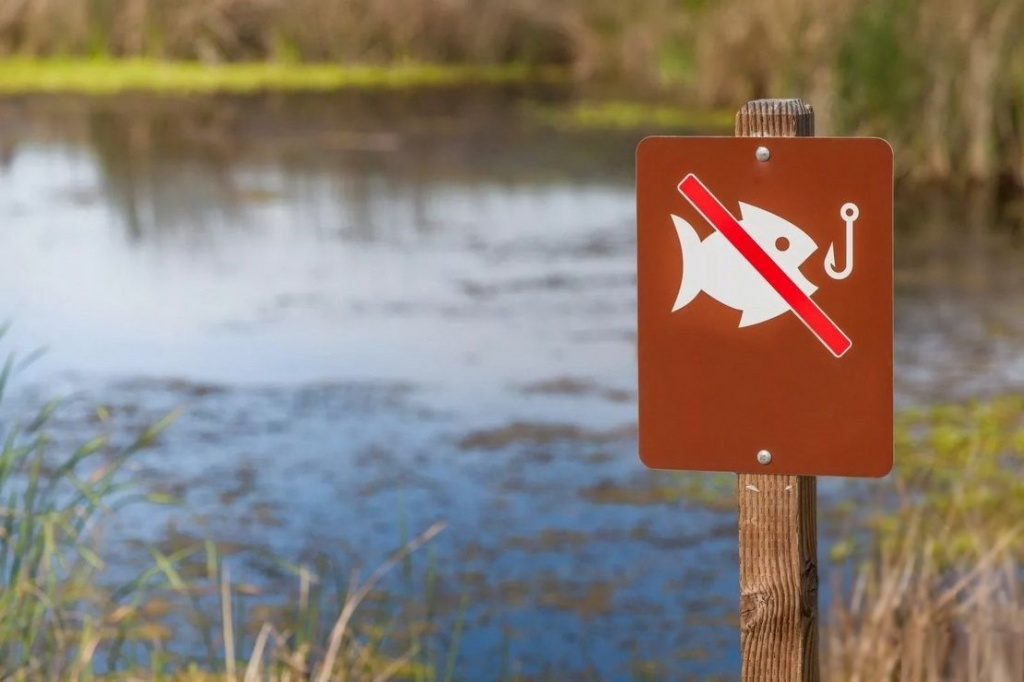 Запрет на лов рыбы в Витебской области начнет действовать раньше