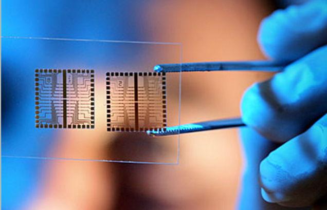 Наука, чип, биочип