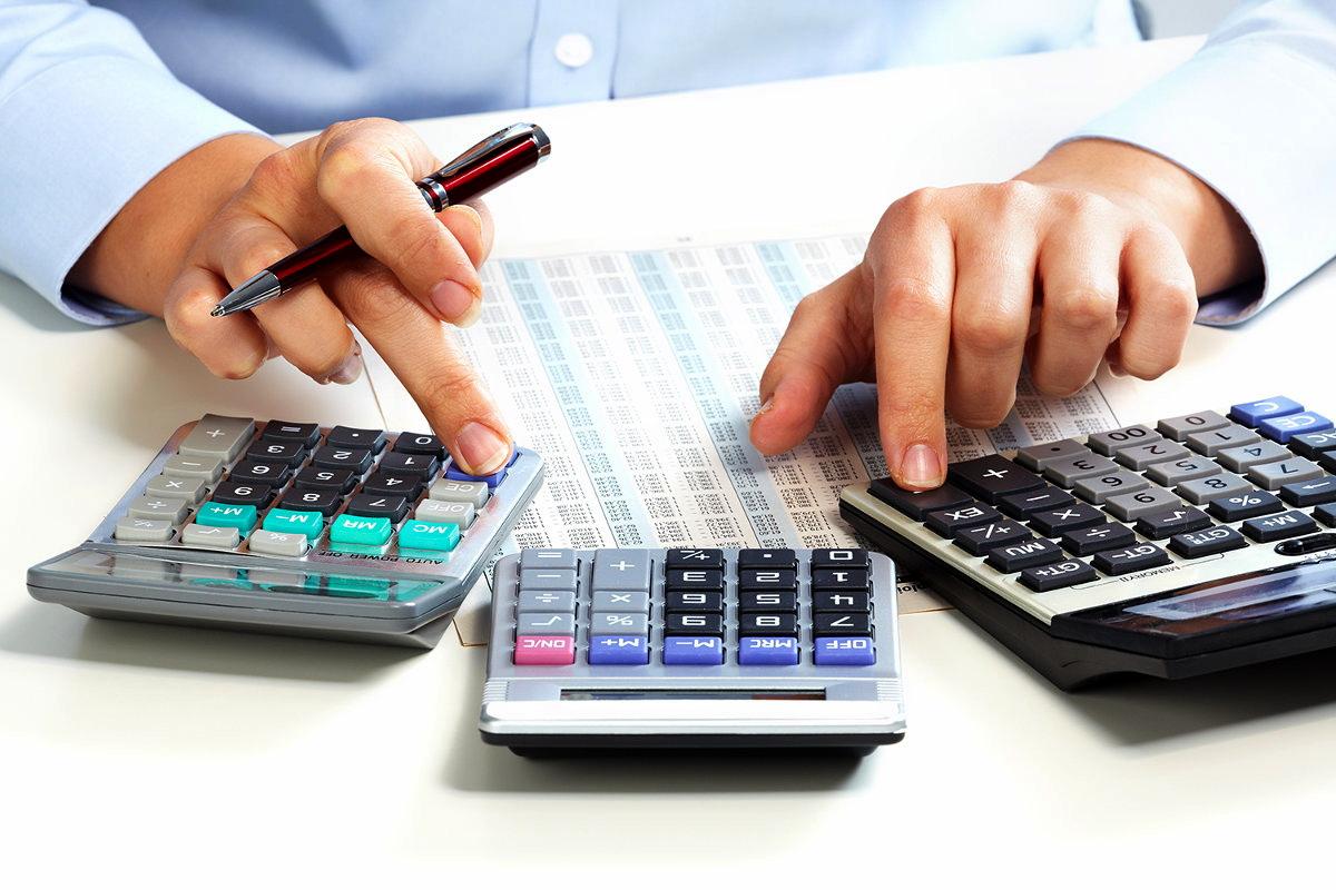 В Витебской области число поданных электронных деклараций по подоходному налогу выросло в 2,3 раза