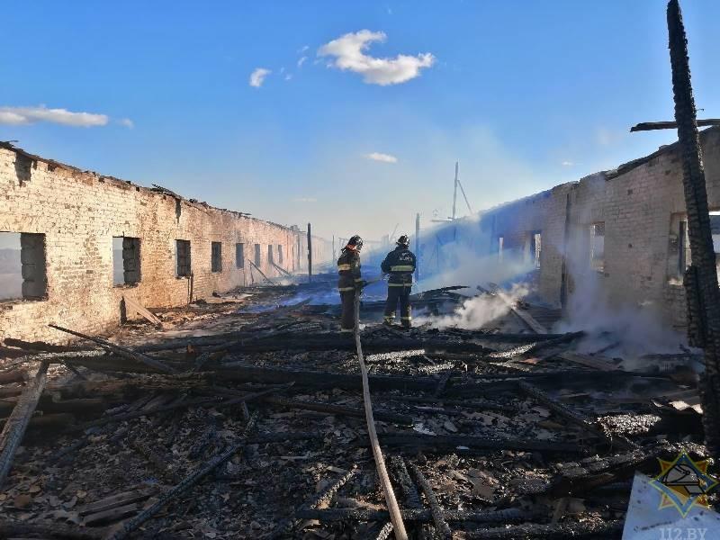 Ученики начальной школы подожгли конюшню под Чашниками, она сгорела дотла