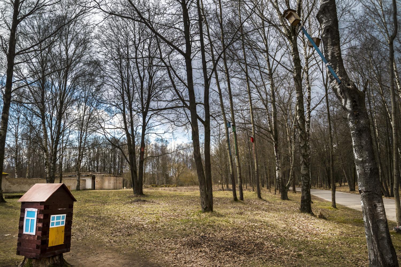 Любимое местоотдыха и развлечениявитеблян — парк Мазурино. Подышите весной!