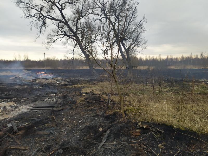 Пал травы привел к крупному пожару в Дубровенском районе