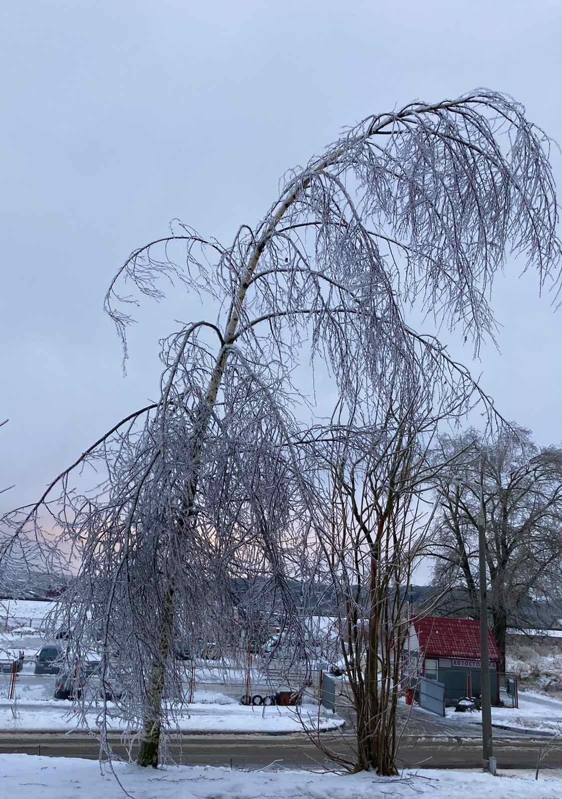 Ледяной коллапс случился в Витебске